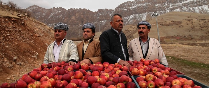 1001 Apples